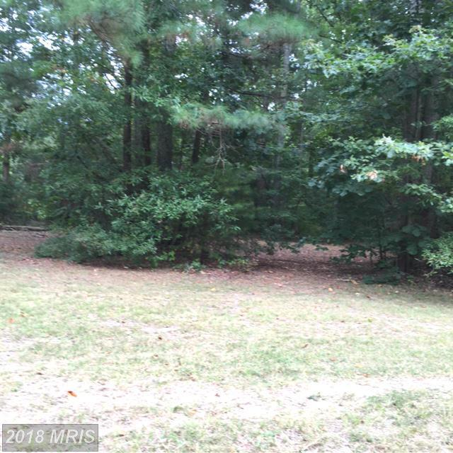 Cabin Point Dr, Montross, VA 22520 (#WE10094895) :: Pearson Smith Realty
