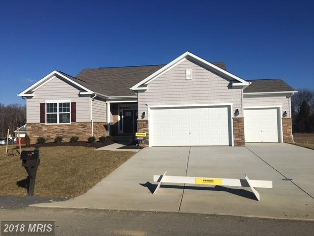 110 Flagstick Court, Front Royal, VA 22630 (#WR10055040) :: Pearson Smith Realty