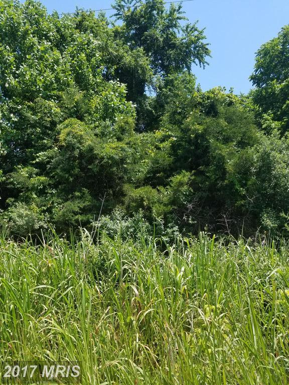Stoney Bottom Road, Front Royal, VA 22630 (#WR9973756) :: LoCoMusings