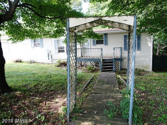 10020 Piney Mt Road, Eckhart, MD 21528 (#AL10085948) :: Pearson Smith Realty