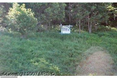 Route 36 Road, Frostburg, MD 21532 (#AL7885507) :: Pearson Smith Realty