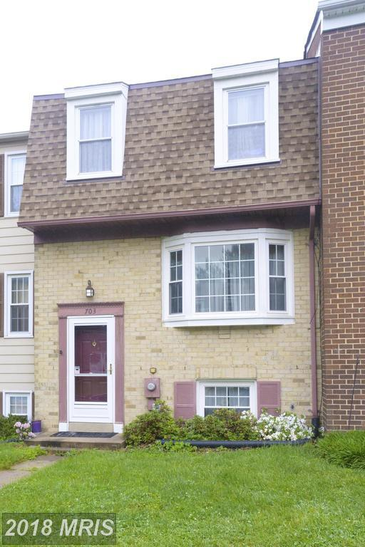 703 Horpel Drive, Mount Airy, MD 21771 (#CR9958122) :: Pearson Smith Realty