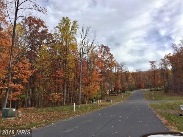 Longwood, Waynesboro, PA 17268 (#FL10062697) :: Pearson Smith Realty