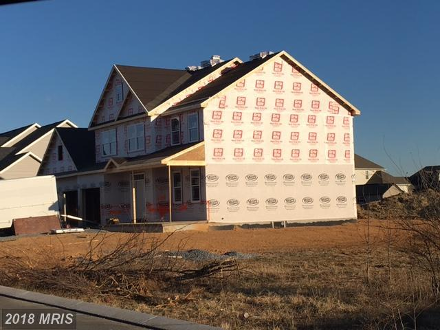 Austin Avenue, Chambersburg, PA 17202 (#FL10083699) :: Pearson Smith Realty