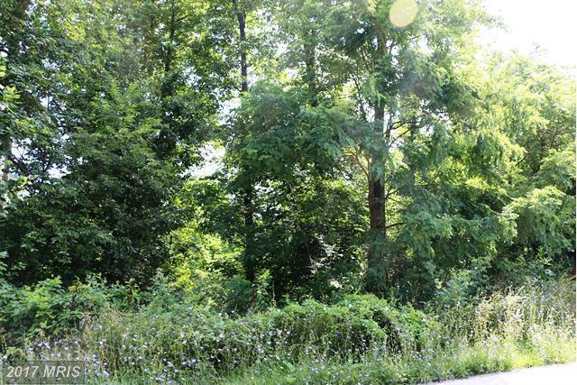 0 Pennersville Road, Waynesboro, PA 17268 (#FL9731501) :: LoCoMusings