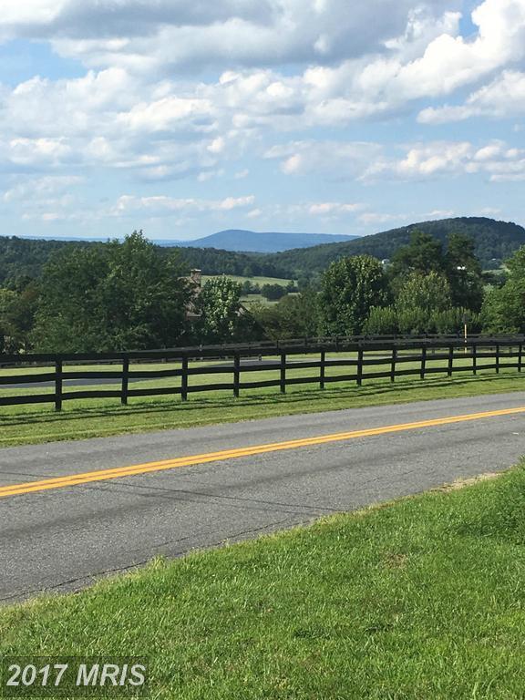 Apple Pie Ridge, Winchester, VA 22603 (#FV9753180) :: LoCoMusings