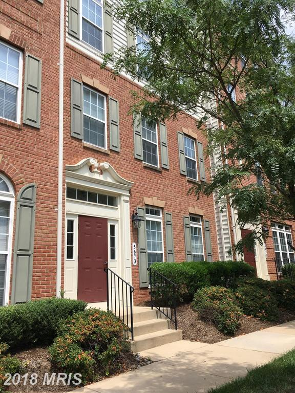 5673 Harrington Falls Lane E, Alexandria, VA 22312 (#FX10288413) :: RE/MAX Executives