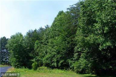 11920 Henderson Road, Clifton, VA 20124 (#FX9622760) :: LoCoMusings