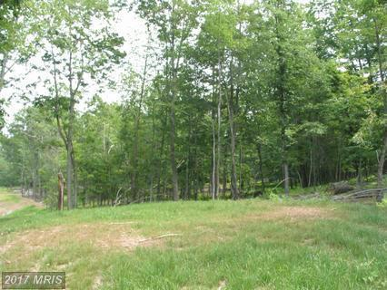 22 Timber Trail, Moorefield, WV 26836 (#HD8483291) :: Pearson Smith Realty