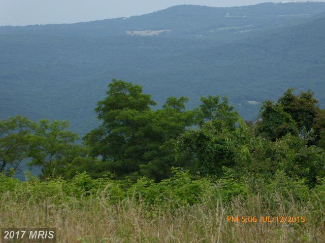 80 North Apple Ridge Road, Romney, WV 26757 (#HS8692355) :: LoCoMusings