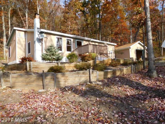 818 Falconwood Drive, Paw Paw, WV 25434 (#HS9511518) :: LoCoMusings