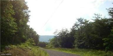 Thistle Ridge Road, Romney, WV 26757 (#HS9843734) :: Pearson Smith Realty