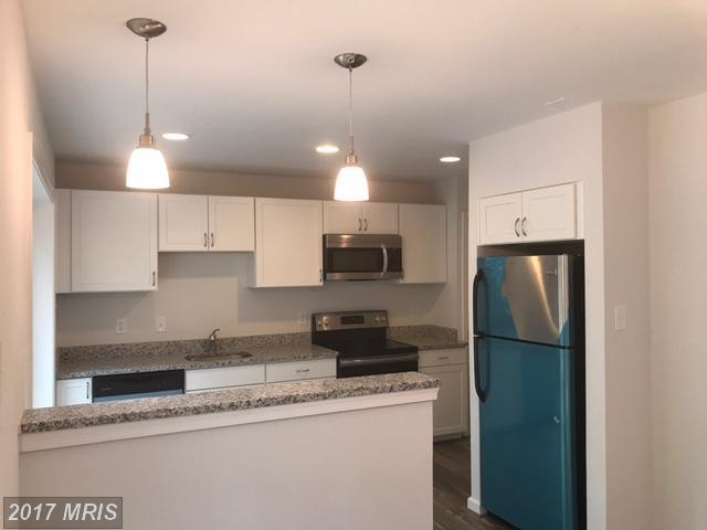 8923 Blade Green Lane, Columbia, MD 21045 (#HW10023443) :: Pearson Smith Realty
