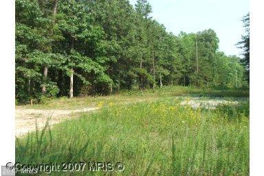 0 Kentucky Springs Road, Mineral, VA 23117 (#LA7175397) :: LoCoMusings