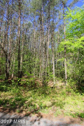 0 Plum Tree Road, Mineral, VA 23117 (#LA8650259) :: Pearson Smith Realty