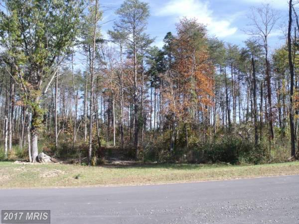 Woodland Shores Drive, Louisa, VA 23093 (#LA9708569) :: LoCoMusings