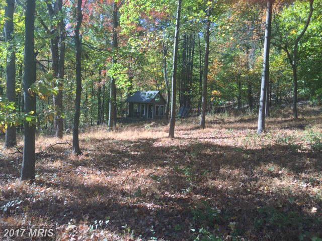 36991 Turneysville Road, Purcellville, VA 20132 (#LO9809687) :: Pearson Smith Realty
