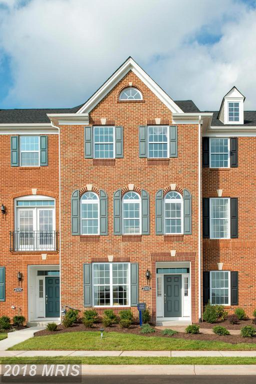 23255 Carters Meadow Terrace, Ashburn, VA 20148 (#LO9910377) :: Pearson Smith Realty