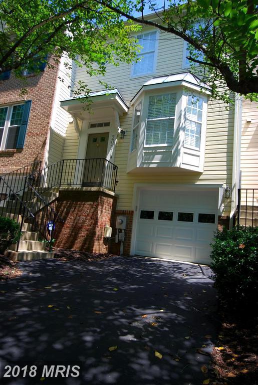 20311 Waters Row Terrace, Germantown, MD 20874 (#MC10315102) :: Bob Lucido Team of Keller Williams Integrity