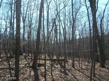 Rosebud Lane, Great Cacapon, WV 25422 (#MO8583459) :: Pearson Smith Realty