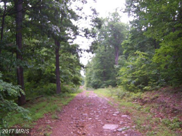 24 Kessel Road, Great Cacapon, WV 25422 (#MO8670181) :: Pearson Smith Realty