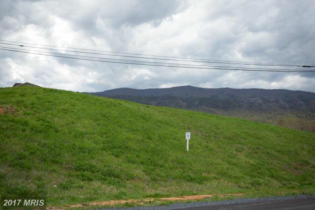 High Knoll Terrace, Shenandoah, VA 22849 (#PA8625659) :: LoCoMusings