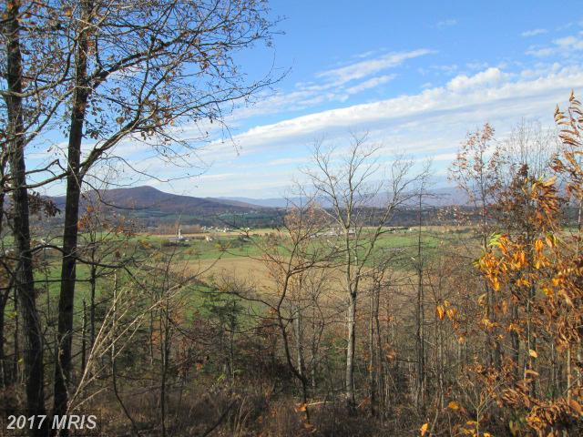 Brenwood, Stanley, VA 22851 (#PA9515393) :: Pearson Smith Realty