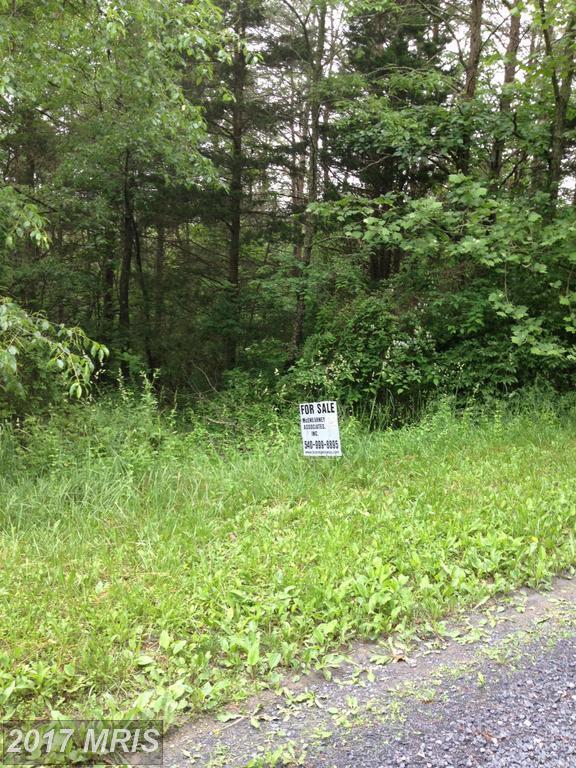 0 Emily Lane, Basye, VA 22810 (#SH8651092) :: Pearson Smith Realty