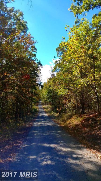 368-LOT Crosswoods Drive, Fort Valley, VA 22652 (#SH9934258) :: LoCoMusings