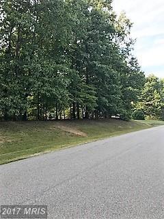 12209 Dell Way, Fredericksburg, VA 22407 (#SP10067200) :: LoCoMusings