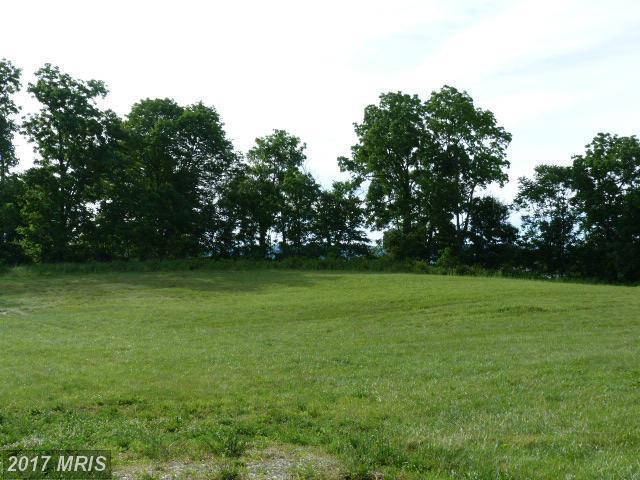 12629 Little Antietam Road, Hagerstown, MD 21742 (#WA9690060) :: LoCoMusings