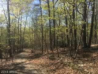 LOT 67 Brandy Road, Front Royal, VA 22630 (#WR10137020) :: Browning Homes Group