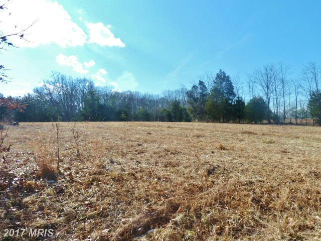 LOT 39 Comforter Lane, Middletown, VA 22645 (#WR8259724) :: LoCoMusings