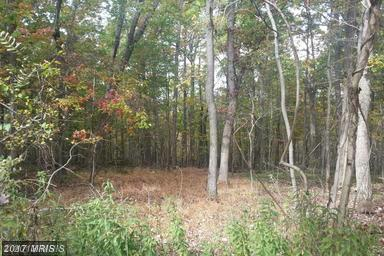 Farms Ridge Road, Front Royal, VA 22630 (#WR9572613) :: Pearson Smith Realty