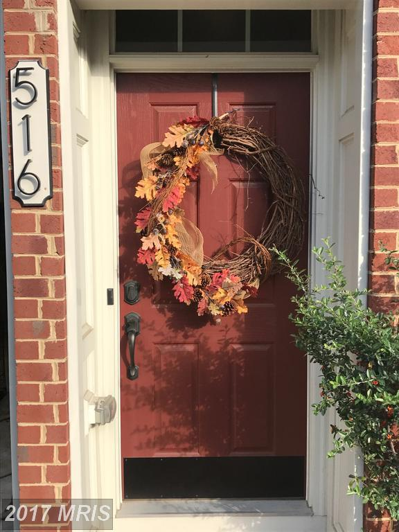 516 Deep Creek View, Annapolis, MD 21409 (#AA10033119) :: Pearson Smith Realty
