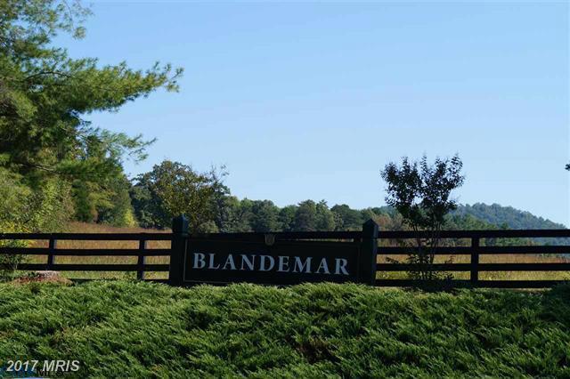 Blandemar Drive, Charlottesville, VA 22903 (#AB9528740) :: LoCoMusings
