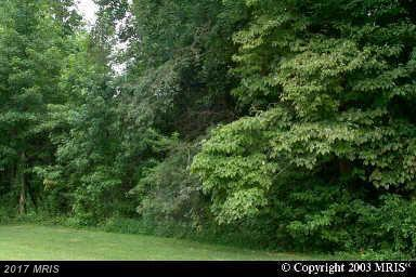11240 Lord Baltimore Drive, Swan Point, MD 20645 (#CH7471583) :: Pearson Smith Realty
