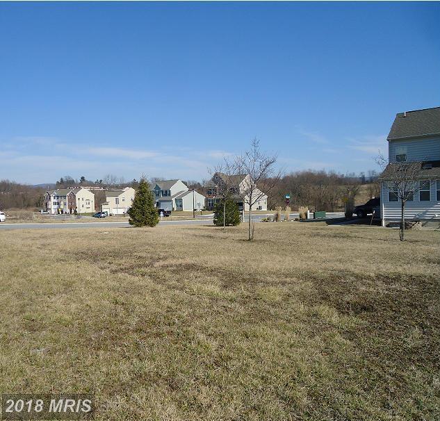 517 Waterdale Drive, Waynesboro, PA 17268 (#FL9865538) :: RE/MAX Executives