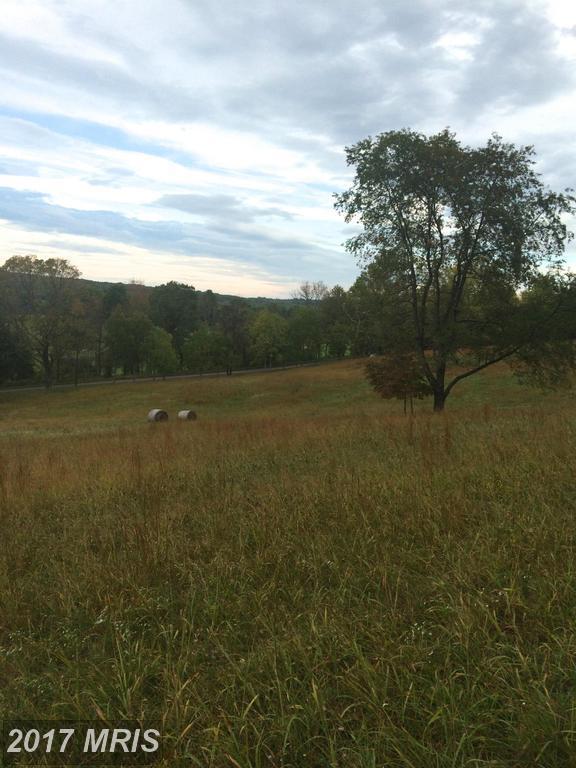 Halfway Road, The Plains, VA 20198 (#FQ9787325) :: LoCoMusings
