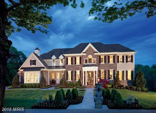 41460 Lavender Breeze Circle, Aldie, VA 20105 (#LO10071334) :: LoCoMusings