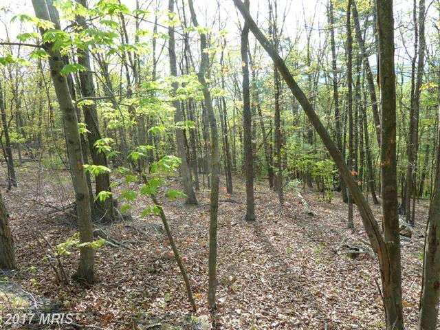 0 Supinlick Ridge Road, Mount Jackson, VA 22842 (#SH8070344) :: Pearson Smith Realty
