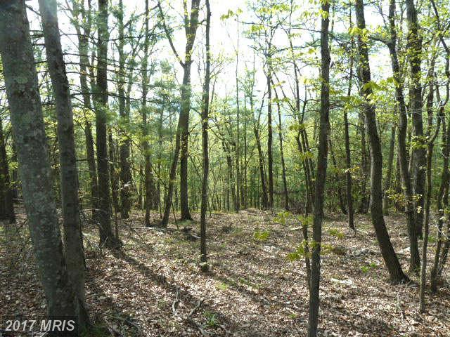 Supinlick Ridge Road, Mount Jackson, VA 22842 (#SH8070406) :: Pearson Smith Realty