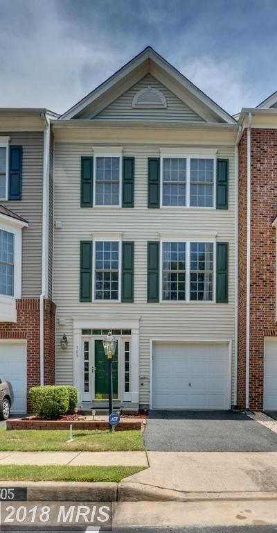 505 Galway Lane, Stafford, VA 22554 (#ST10287743) :: Bob Lucido Team of Keller Williams Integrity