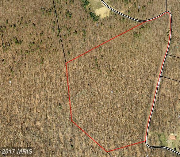 Fall Run Lane, Winchester, VA 22602 (#FV8576205) :: Pearson Smith Realty