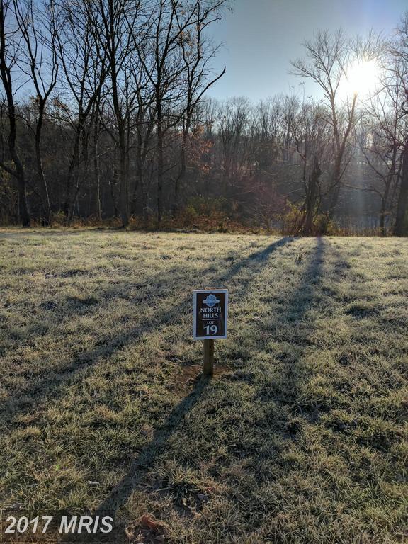 19 Briar Mountain Drive, Shepherdstown, WV 25443 (#JF9810666) :: Pearson Smith Realty