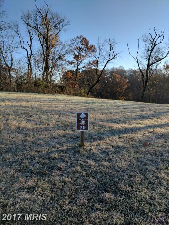 20 Briar Mountain Drive, Shepherdstown, WV 25443 (#JF9810673) :: Pearson Smith Realty