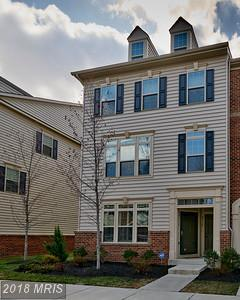 42129 Piebald Square, Aldie, VA 20105 (#LO10170890) :: The Greg Wells Team