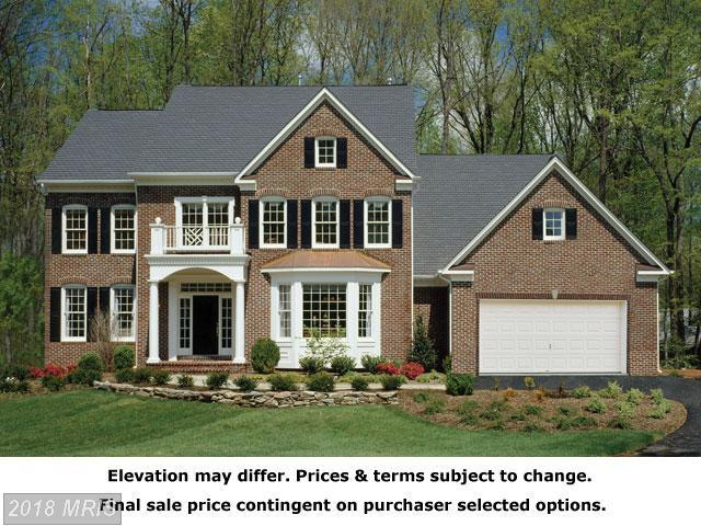 Waterford Meadow Place, Hamilton, VA 20158 (#LO9955462) :: The Bob & Ronna Group