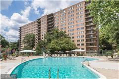 1900 Lyttonsville Road #401, Silver Spring, MD 20910 (#MC10254739) :: ExecuHome Realty