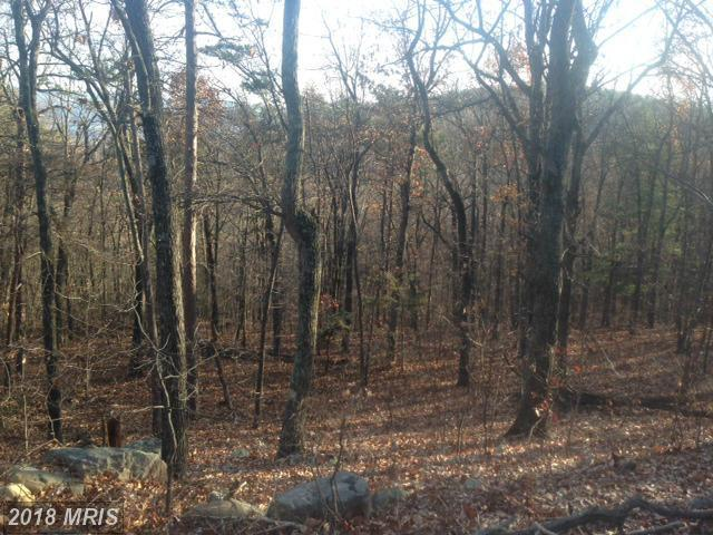 Panorama View Dr., Stanley, VA 22851 (#PA8507864) :: The Bob & Ronna Group